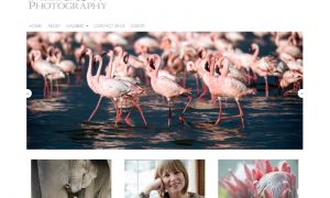 web – Merrow Photography